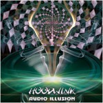 Audio Illusion - Hoodwink