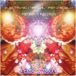 Harmonic Module - E.V.P