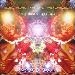 Harmonic Module – E.V.P