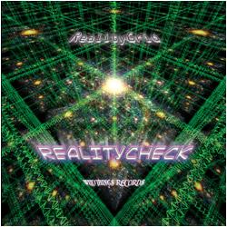 Reality Check – RealityGrid