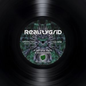 Natural State – RealityGrid – Wild12″001
