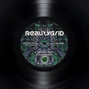 Natural State – RealityGrid – Wild12″001